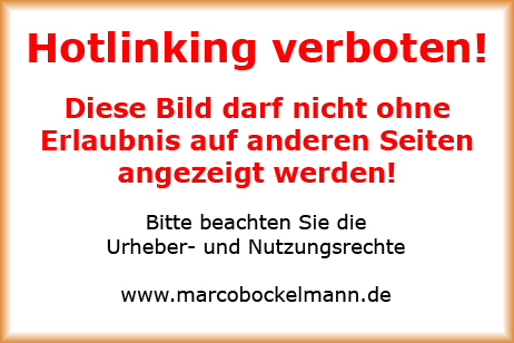 Zebco Brandungsvorfach No-6 © MaBoXer.de
